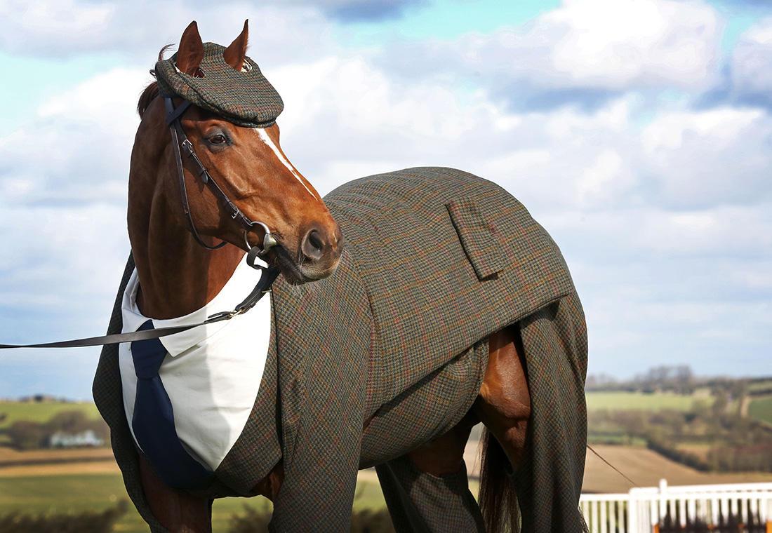 наряды для лошадей в картинках накладных ресниц