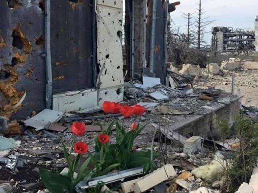 Обе стороны конфликта на Донбассе не соблюдают договоренность о неприближении друг к другу, - ОБСЕ - Цензор.НЕТ 6399
