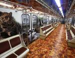 Вагон тематического поезда в Москве, посвящённый представителям семейства Кошачьи.