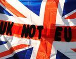 """Результаты голосования в Британии за выход из ЕС превратили Евросоюз в """"коматозника"""" - эксперт"""