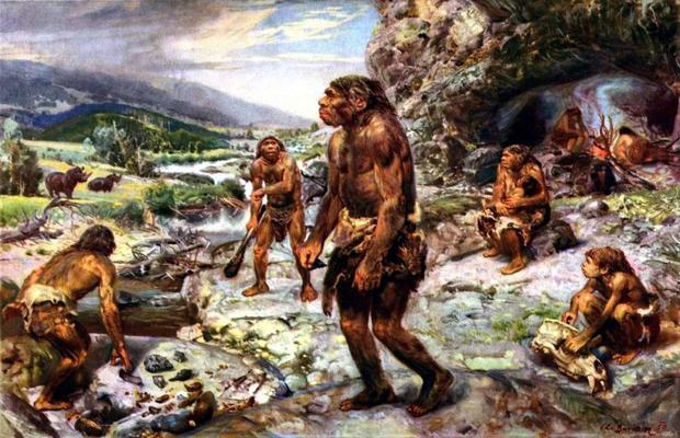 Походки Homo erectus исовременного человека идентичны