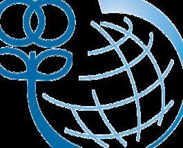 МИД Израиля приглашает преподавателей украинских ВУЗов поучиться на «Святой Земле»
