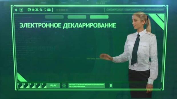 ВЕС сообщили о несоблюдении процедуры— Запуск Э-декларирования