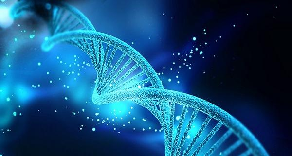 the definitions of cloning and the modern development of the science of genetic engineering A secondary school revision resource for aqa gcse science about genetic engineering is also called genetic and against cloning and genetic engineering.