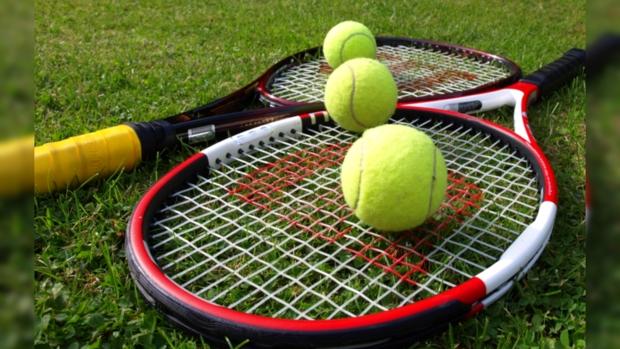 ITF планирует расширить число участников Мировой группы Кубка Федерации до16 команд