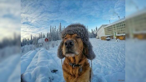 Государство Украину ожидает лютая зима— Народный синоптик