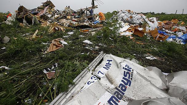 В государственной думе назвали «чистой диверсией» расследование крушения MH17