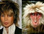 Сергей Зверев и обезьяна