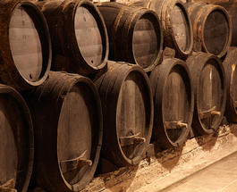 В Бордо открыли уникальный музей вина