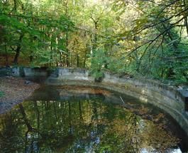 Экологическая катастрофа в Крыму: водоемы и горные водопады исчезают на глазах