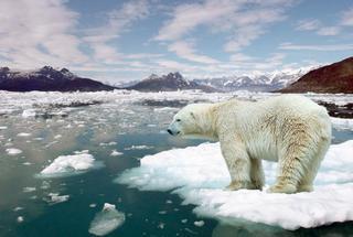 NASA показало как происходит процесс глобального потепления на Земле