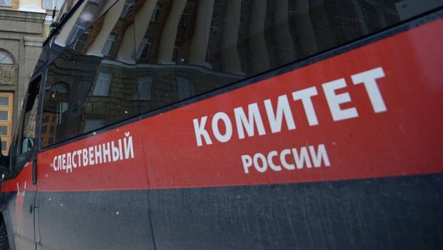 Вкартине Васи Ложкина усмотрели экстремизм