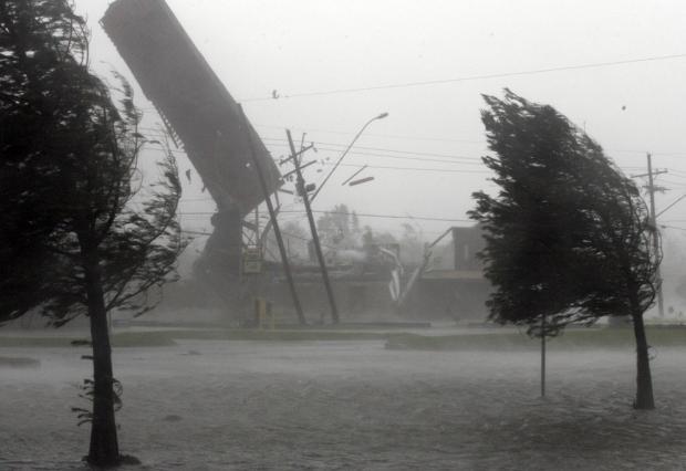 ВНовороссийске норд-ост повалил деревья ирекламу