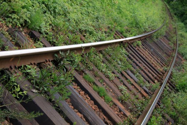 Минобороны Российской Федерации: РФпустит поезда вобход государства Украины летом 2017 года