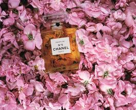 Chanel поставила ультиматум французской железнодорожной компании