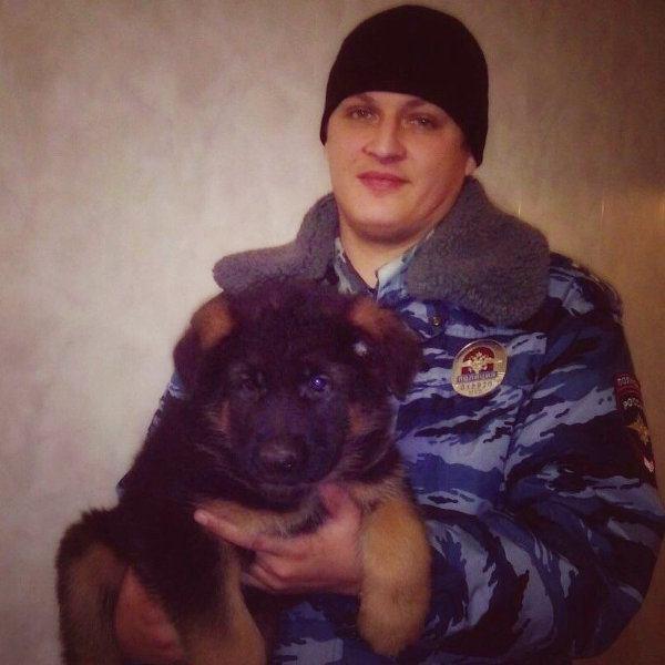 Подаренный французским полицейским пес Добрыня оказался непригоден кслужбе вспецназе