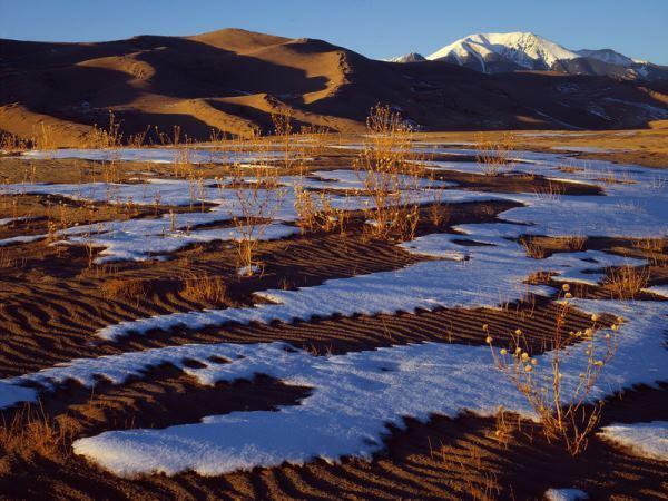 ВСахаре выпал снег впервый раз за37 лет