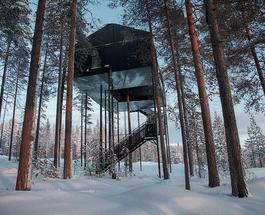 Туризм для сильных духом: в Швеции вблизи Полярного круга появился отель на дереве
