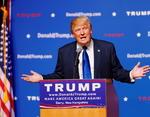 Дональд Трамп вновь оказался раскритикован знаменитостями