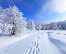 Гисметео: погода в Украине даст