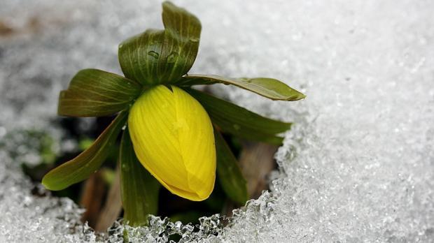 Синоптики поведали, когда потеплеет