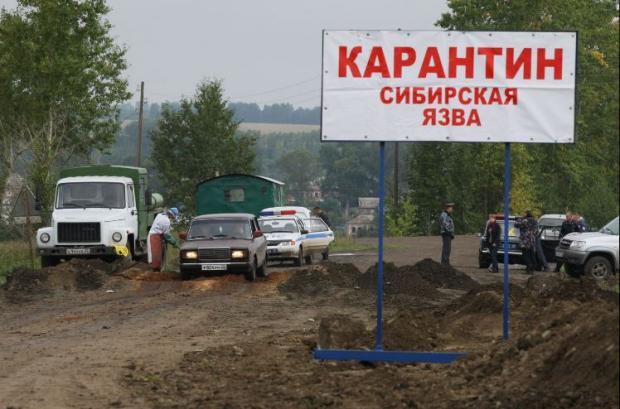 Ученые: РФ угрожают чума, сибирская язва ихолера
