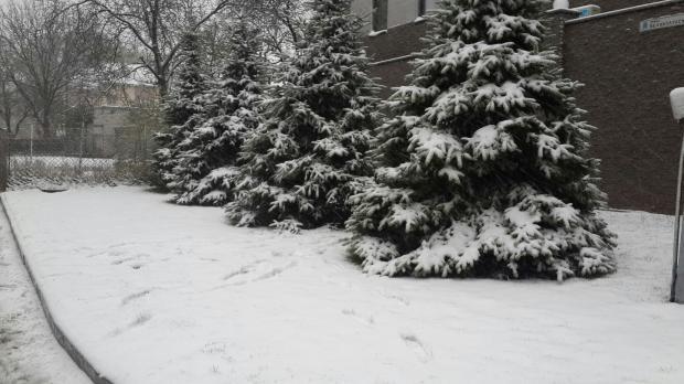 Погода перми и пермском крае на две недели