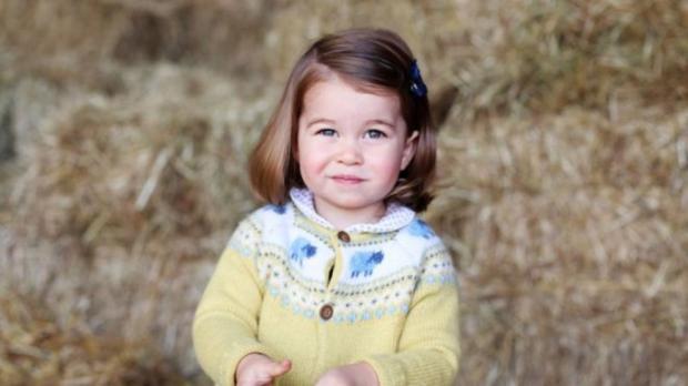 Принцессе Шарлотте два года: королевская семья обнародовала новую фотографию – ФОТО 01.05.2017 20:14