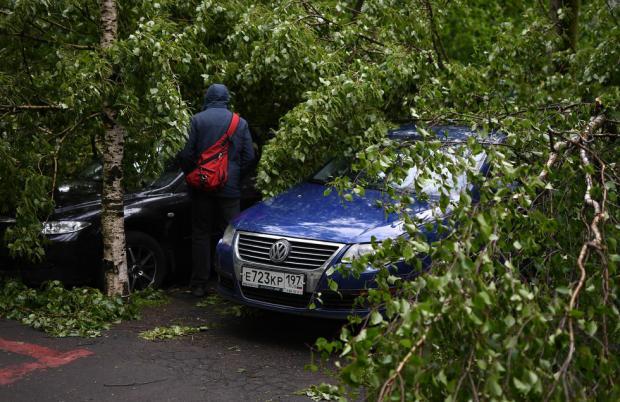 Погода в Москве: ураган унес жизни 16 человек