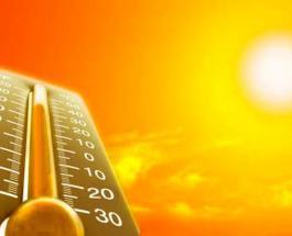 Ученые: от смертельной жары пострадает каждый второй житель планеты