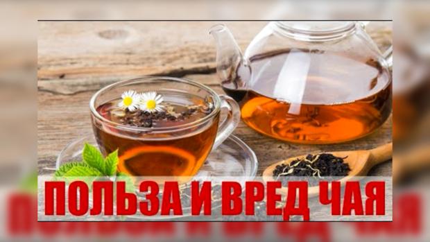черного чая худеют дцп