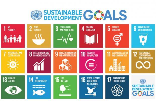 Картинки по запросу Днем государственной службы Организации Объединенных Наций (United Nations Public Service Day).