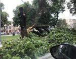 Непогода наделала беды на западе Украины: пострадали Львов и Луцк