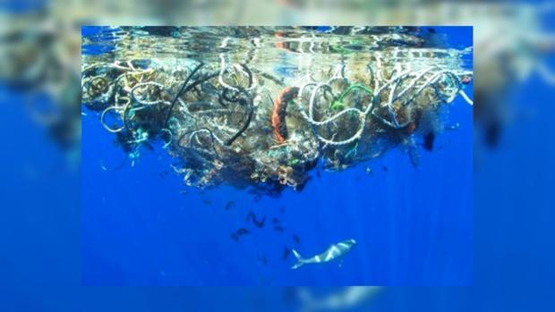 мусор в океане