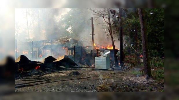 ВКиеве впарке Пушкина произошел интенсивный пожар. Сгорел ресторан