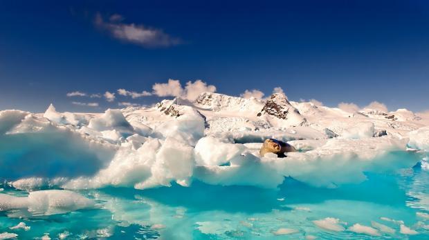 Минприроды представило план понаведению вАрктике первозданной чистоты