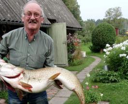 Что за рыбы в Эстонии: рыбак поймал гигантскую щуку в пруду