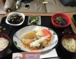 Лосось с грибным соусом, соба, рис, говядина с баклажаном, брокколи, салат из хидзики.