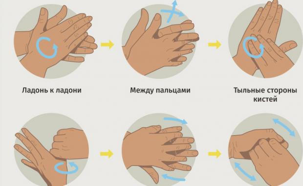 как правильно очистить организм от паразитов
