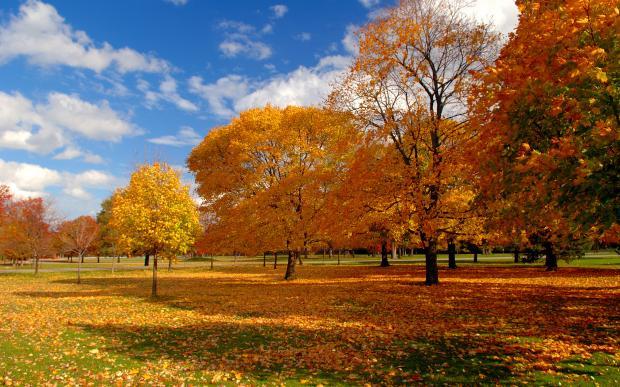 October weather
