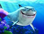 Зубастые монстры: 10 самых крупных акул пойманных человеком