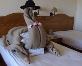 """Приколы в отелях: """"сюрпризы"""" ожидающие гостей в номерах"""