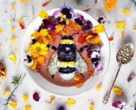 Шедевры кулинарного искусства: девушка превращает смузи в картины