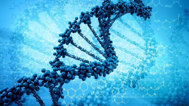 Интересные факты о науке: ошибочные теории опровергнутые современными учеными