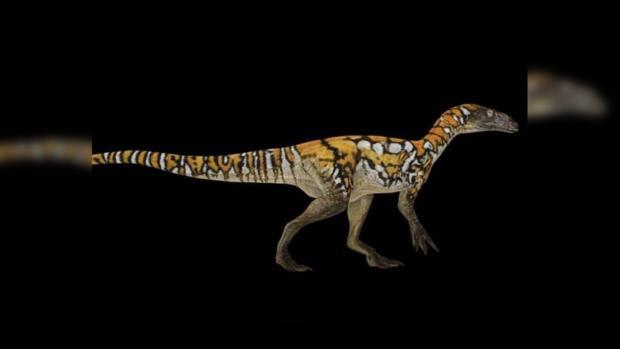 динозавр теропод