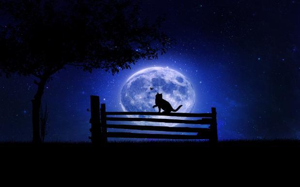 Примета нельзя шить на ночь примета