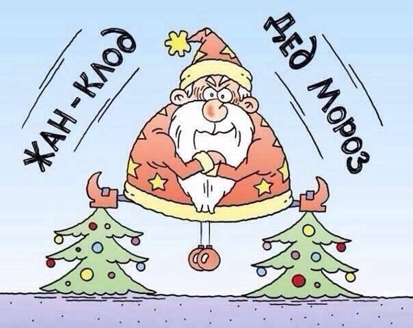 Новый год картинки смешно до, кота как