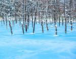 Озеро Блю Понд, Хоккайдо, Япония