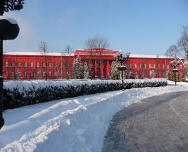 Университет имени Тараса Шевченко отменил занятия до марта: на отопление нет средств