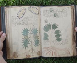 Канадские ученые расшифровали манускрипт Войнича